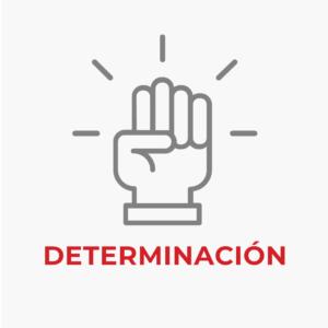 Iconos-Nosotros-Propositos-Determinacion-Seccion-3-Decapack