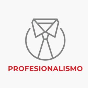 Iconos-Nosotros-Propositos-Profesionalismo-Seccion-3-Decapack